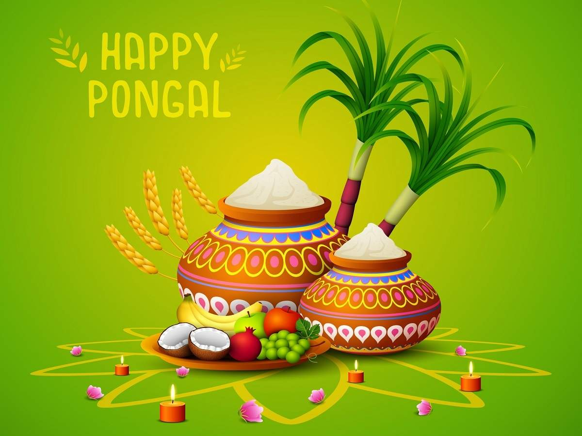 happy pongal messages sms 2021