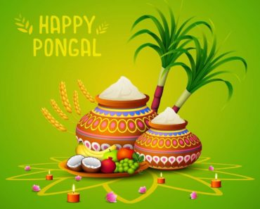 happy pongal sms messages